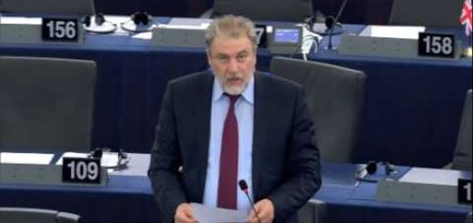 Future for telecommunications, fair use and intra-EU calls ed persons