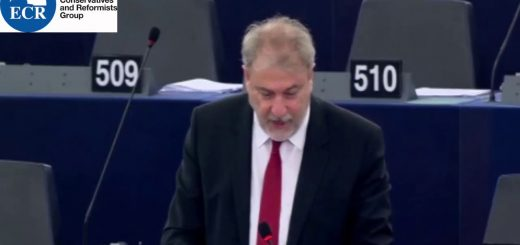 Humanitarian emergencies in the Mediterranean and solidarity in the EU