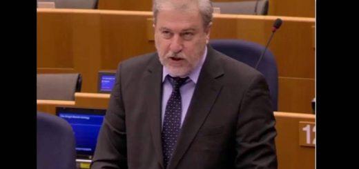 Intervenciones en sesión plenaria