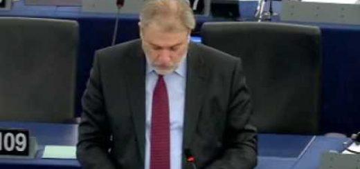 Revisión intermedia de la Estrategia de la UE sobre la Biodiversidad