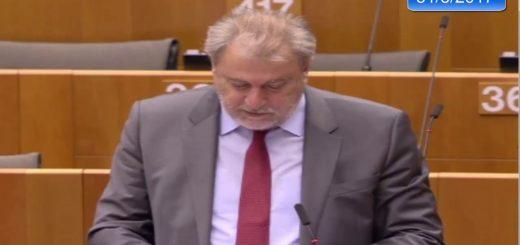 La resiliencia como prioridad estratégica de la acción exterior de la UE