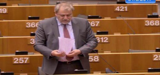 Marco plurianual para la Agencia de los Derechos Fundamentales de la UE en el período 2018-2022 – Marco plurianual para la Agencia de los Derechos Fundamentales de la UE en el período 2018-2022
