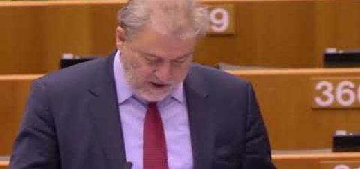 Aplicación de la Estrategia Europea sobre Discapacidad continuación del debate
