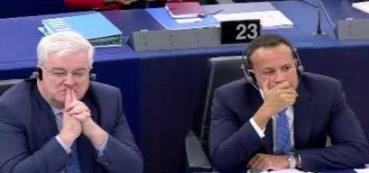 Capítulos sobre comercio y desarrollo sostenible en los acuerdos comerciales de la UE