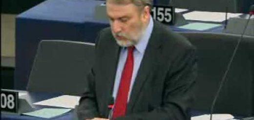 Attività dell'Assemblea parlamentare paritetica ACP-UE