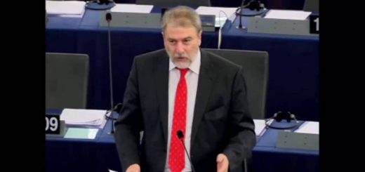 Audizione su una revisione del regime dell'ora legale in Europa