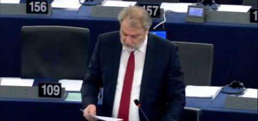 Attività della commissione per le petizioni 2015 (I)