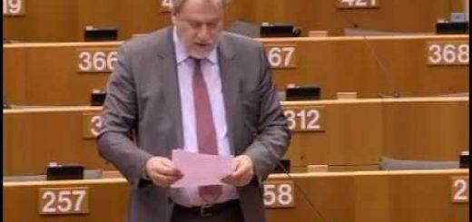 Quadro pluriennale per l'Agenzia dell'Unione europea per i diritti fondamentali per il periodo 2018-2022 – Quadro pluriennale per dell'Unione europea per i diritti fondamentali per il periodo 2018-2022