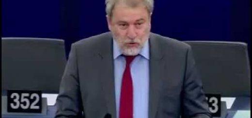 Stato degli stock ittici e situazione socio-economica del settore della pesca nel Mediterraneo