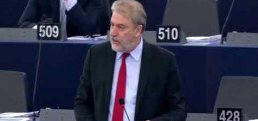 Partecipazione delle persone con disabilità alle elezioni europee