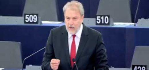 Presentazione del programma di attività della Presidenza austriaca