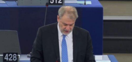 Stato del dibattito sul futuro dell'Europa