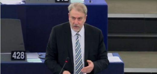 Dichiarazioni di voto   Iniziativa dei cittadini europei