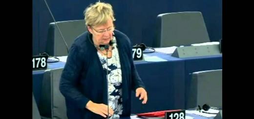 Νότης Μαριάς στην Ευρωβουλή: Όχι στην κινεζοποίηση των μισθών.