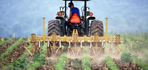 farmer-and-tractor-tilling-soil-725x477